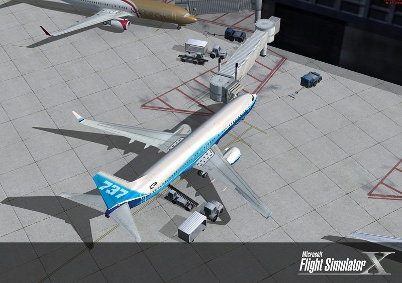 Microsoft Flight Simulator X - Professional Edition