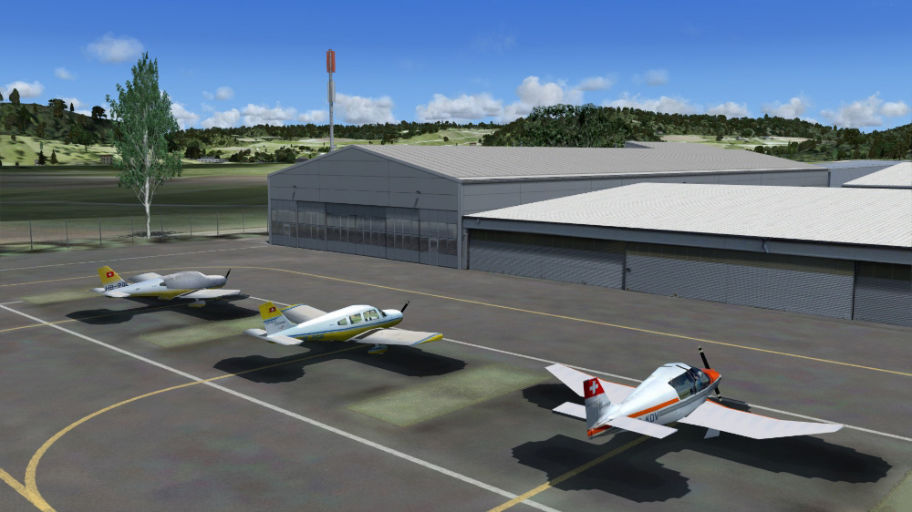 Airport Birrfeld professional (P3D V4)