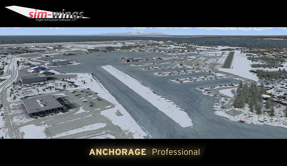 Anchorage professional