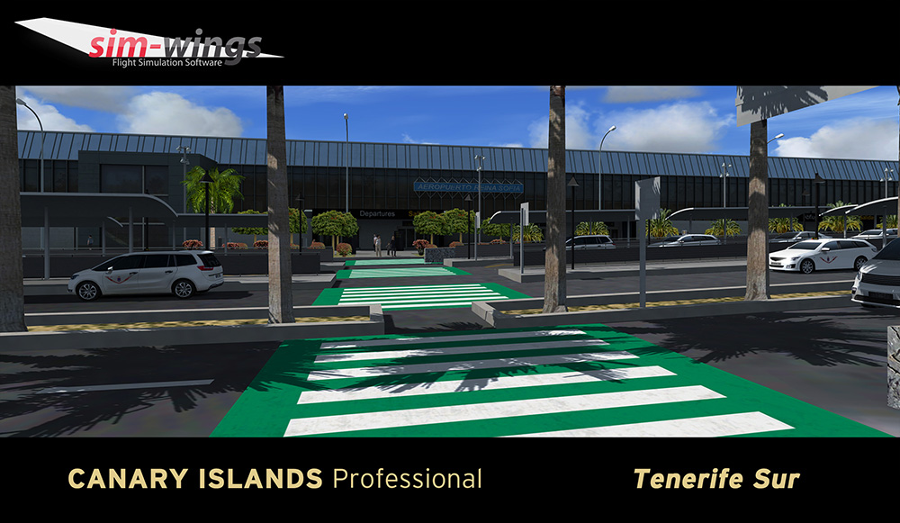 Canary Islands professional - Tenerife Sur