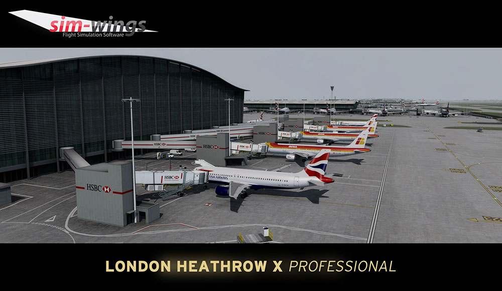 Mega Airport London Heathrow professional